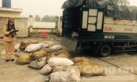 CSGT bắt vụ vận chuyển hơn 2 tấn bì heo thối