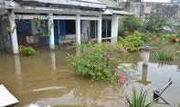 Hàng trăm nhà dân lại ngập do cống ngăn triều gặp sự cố