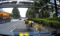 Dừng xe mô tô giữa cao tốc để cứu... chim