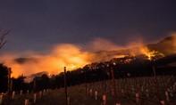 Cháy rừng trên diện rộng ở California khiến ít nhất 10 người chết