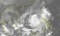 Áp thấp nhiệt đới sắp mạnh thành bão, TP.HCM sẵn sàng sơ tán dân