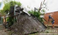 Phú Yên xơ xác sau bão Con Voi