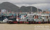 Chủ tịch UBND tỉnh Bình Định yêu cầu làm rõ nguyên nhân nhiều tàu hàng bị chìm