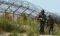 Lại có lính CHDCND Triều Tiên vượt DMZ sang Hàn Quốc