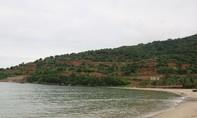 Quyết định thanh tra bán đảo Sơn Trà và khu đô thị quốc tế Đa Phước