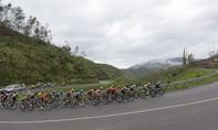 Giải xe đạp Truyền hình Bình Dương 2017: Ngày thi đấu thành công của Dược Domesco Đồng Tháp