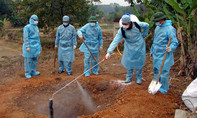 Chủ động kiểm soát tốt dịch bệnh truyền nhiễm vào Việt Nam