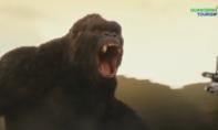 Phim bom tấn 'Kong: Skull Island' vào clip quảng bá du lịch Quảng Bình