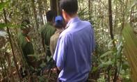 Quảng Ngãi: Nổ súng trong rừng làm thợ săn tử vong