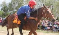 'Kỵ sĩ nông dân' đua tài