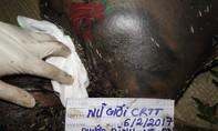Vụ xác người trong bao tải ở Đồng Nai: Nạn nhân bị sát hại bằng vật sắc, hai tay bị trói