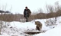 'Đột nhập' Chernobyl sau 31 năm 'vắng bóng' chân người