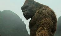 'Kong: Skull Island' thu 104 tỷ đồng tại Việt Nam sau 7 ngày công chiếu
