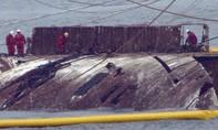 Cận cảnh phà Sewol được trục vớt sau gần 3 năm chìm đáy biển