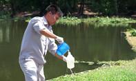 Sở TN-MT Bình Dương khảo sát hiện tượng cá chết hồ ở Từ Vân