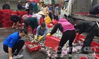 Ôtô chở 2 tấn cá bị lật, người dân thu gom hàng giúp tài xế