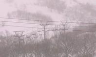 Lở tuyết kinh hoàng ở Nhật khiến nhiều người thương vong