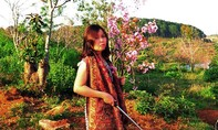 Nữ du khách bẻ hoa Mai Anh Đào khiến dân mạng dậy sóng