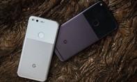 Google đầu tư vào sản xuất màn hình OLED