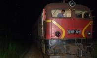 Quảng Ngãi: Tàu hỏa trật bánh khỏi đường ray do đâm phải đàn trâu