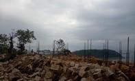 Thủ tướng yêu cầu báo cáo vụ việc tại bán đảo Sơn Trà, Đà Nẵng