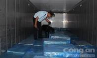 Phát hiện 3 container chứa hàng tấn lá Khat, shisha