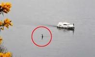'Quái vật hồ Loch Ness' bất ngờ xuất hiện, di chuyển gần tàu du lịch