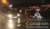 TP.Hồ Chí Minh vào mùa mưa: Giải pháp nào chống ngập úng?