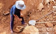 Hàng trăm người dân đổ xô đi mót quặng vàng