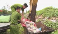 Đắk Lắk tiêu hủy 160 kg thuốc Ama Công giả