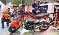 Cận cảnh xe thể thao Honda MSX 125cc 2017