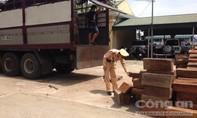 Cảnh sát giao thông bắt xe chở 11m3 gỗ lậu thuộc nhóm quý hiếm