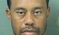 Tiger Woods lại chìm trong bê bối sau khi bị cảnh sát bắt