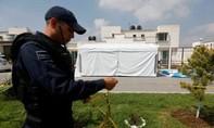 Xả súng tại tiệc mừng sinh nhật ở Mexcio khiến 11 người chết
