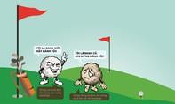 Chọn dụng cụ thích hợp cho người mới chơi golf