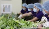 Đảm bảo an toàn thực phẩm theo chuỗi là xu hướng phát triển bền vững