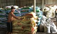 TP.HCM: Đột kích xưởng sản xuất phân bón giả làm từ hóa chất Trung Quốc