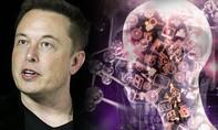 Elon Musk đánh giá cao 'trí tuệ nhân tạo' và phản bác 'ra mặt' ý kiến đối lập
