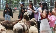 Khám phá sở thú phong cách Úc tại Đà Lạt