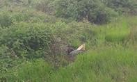 Phát hiện thi thể phụ nữ dưới mương nước bên đường
