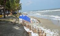Bàn giải pháp chống xói lở bờ biển Cửa Đại, TP Hội An