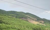 Phá rừng, chiếm đất lâm nghiệp ở An Lão diễn biến phức tạp