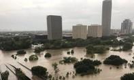 Siêu bão Harvey biến nhấn chìm Houston trong biển nước