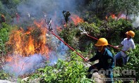 Cháy khoảng 20 ha rừng nguyên sinh ở xã Quế Thọ