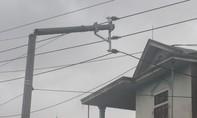 Bão số 10 khiến 295 xã, gần 500.000 hộ dân bị mất điện