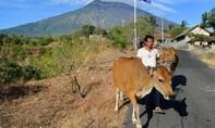 Hàng ngàn người phải di tản vì núi lửa chuẩn bị phun trào ở Bali