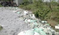 Clip bắt quả tang công ty sơ chế da động vật đổ trộm chất thải nguy hại