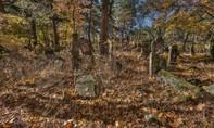 Tìm thấy ít nhất 33 hộp sọ trong 3 hố chôn tập thể ở Mexico