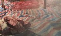 Gần 4 tấn thịt heo không hợp vệ sinh trong kho phủ bạt ở Sài Gòn