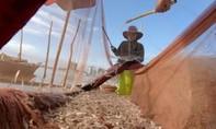 Trung Quốc xây đập thuỷ điện trên sông Mekong, ngư dân Campuchia điêu đứng
